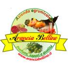Arancia Bellino