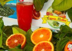 foto arance formato web (8 di 62)