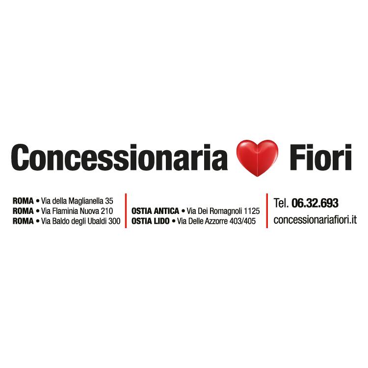 Concessionaria Fioria